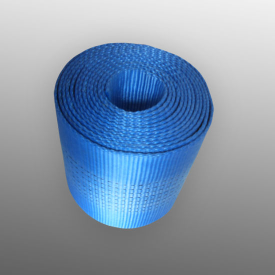 Polyester Webbing, Webbing for Webbing Sling pictures & photos