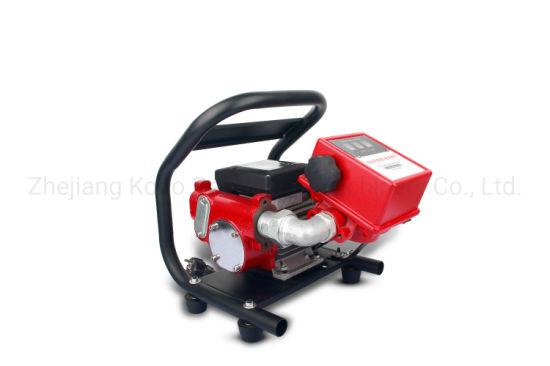 Portable Fuel Pump Transfer Set