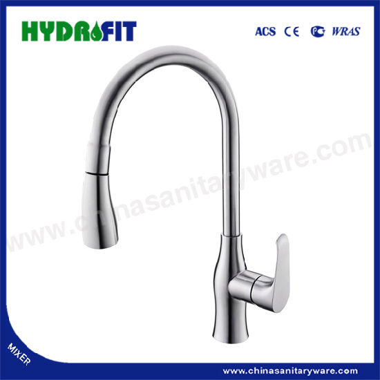 Sanitary Ware Pull-out Sink Mixer SUS304 Faucet Kitchen Tap (FT1102)