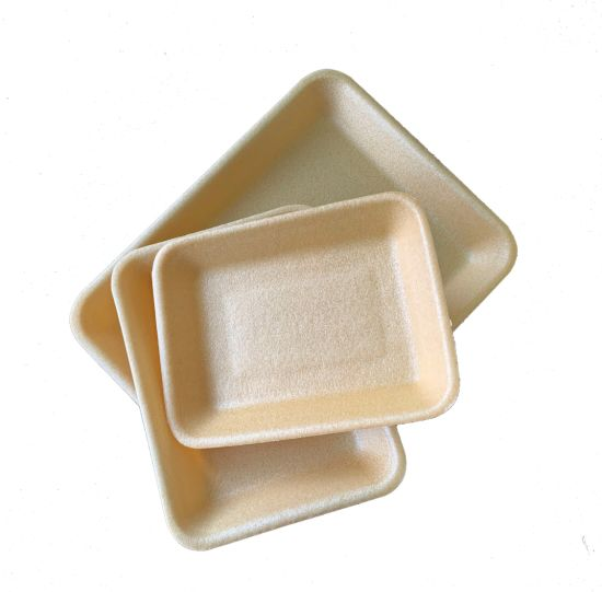 Supermarket Vegetable Foam Biodegradable Meat Tray Wholesale Plastic Clamshell Packaging