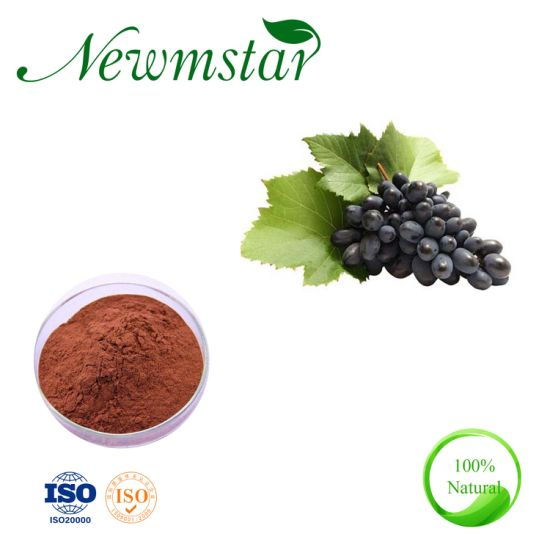 100% Natural Grape Seed Extract with 95% OPC Cheapest Price
