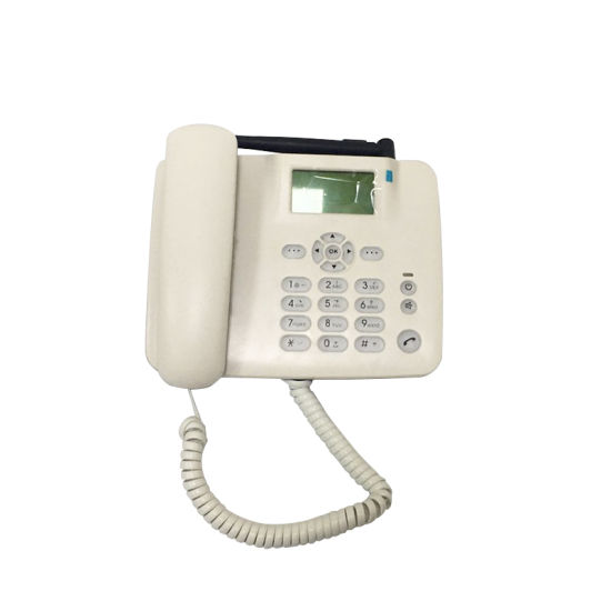 1 SIM GSM Fixed Home Phone with FM (F316) pictures & photos