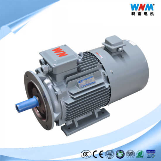 5~100Hz Frequency Variable Speed Controller Three Phase AC Electric Motor VFD Inverted Duty Squirrel Cage Induction Motor for Fan Pump Compressor 0.18~375kw