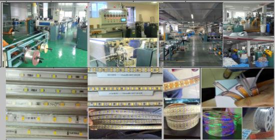 Longxinzhenglong Machinery Luminescent LED SMD Extrusion Molding Machine