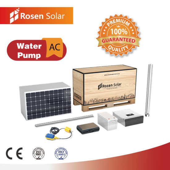Rosen 1.5HP Submersible AC Water Pump System for Agriculture