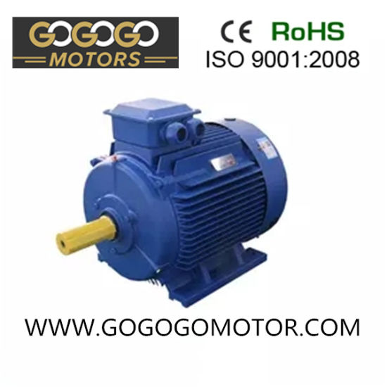 22kw 30HP 2 Pole Three Phase Asynchronous Electric Induction AC Motor