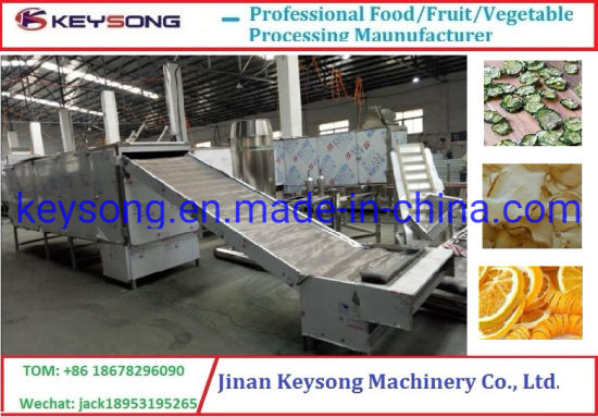 300kg/H Stainless Steel Mesh Dryer Food Drying Machine pictures & photos