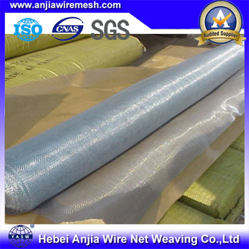 Hot Sale Galvanized Iron Wire Window Screen Anti-Corrosion Produce by China Supplier pictures & photos