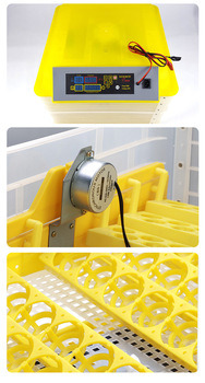Hhd Full Automatic 96 Eggs Incubator Egg Hatching Machine pictures & photos