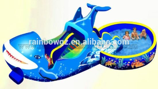 Lake Inflatable Water Park Slides / Water Inflatable Water Slides for Pond pictures & photos