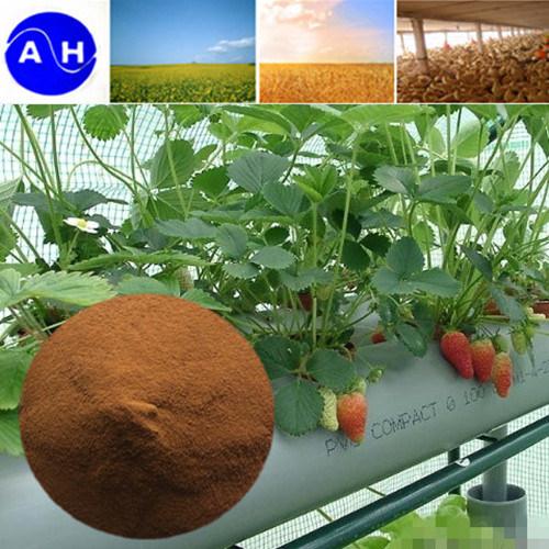Organic Chelating Ferric Fertilizer Amino Acid Chelate