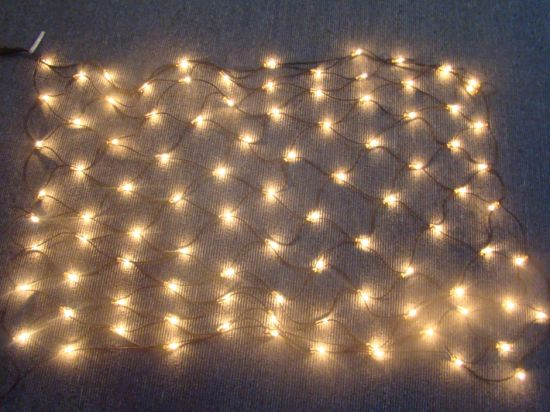 LED Net Light pictures & photos
