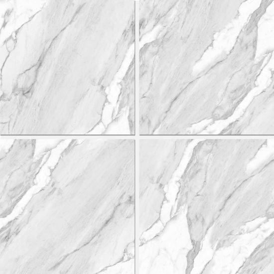 Newest Designs Building Material Porcelain Floor Tiles