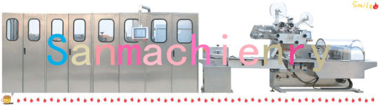Fully Automatic Portable Wet Wipes Production Line, Cross Fold Wet Wipes Machine pictures & photos