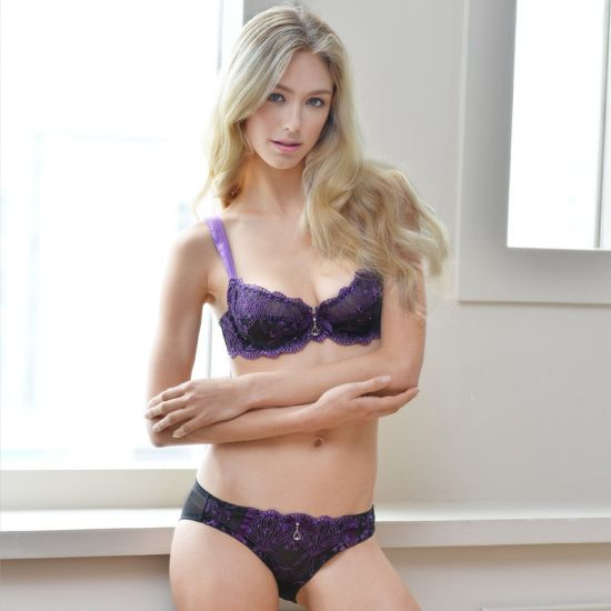 29e5af2b8fb62 Factory Price Women Underwear Bra New Design Sexy Bra Set pictures   photos