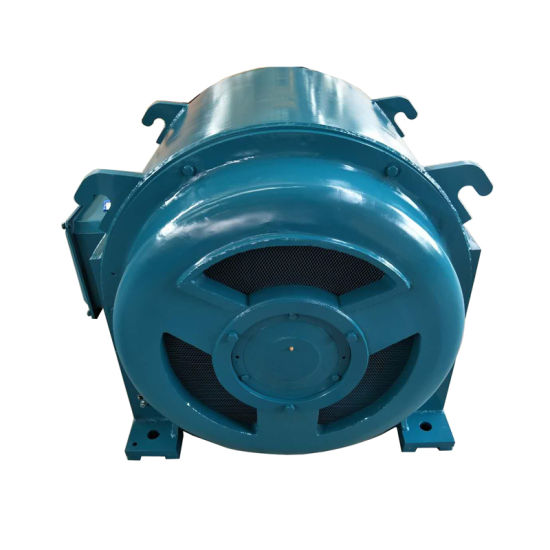China High and Low Voltage 3-Phase Squirrel-Cage Rotor Asynchronous