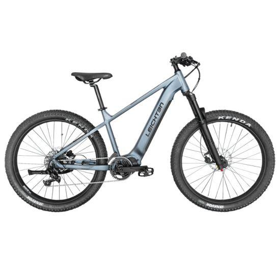 2019 Model Super Performance 48V Green Power Hidden Battery Electric Bike Chinese Mountain E Bike