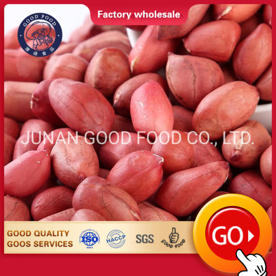 Raw Peanuts Price Groundnut Kernels for Sale [Java & Bold Peanuts] - Manufacturers, Wholesale Suppliers