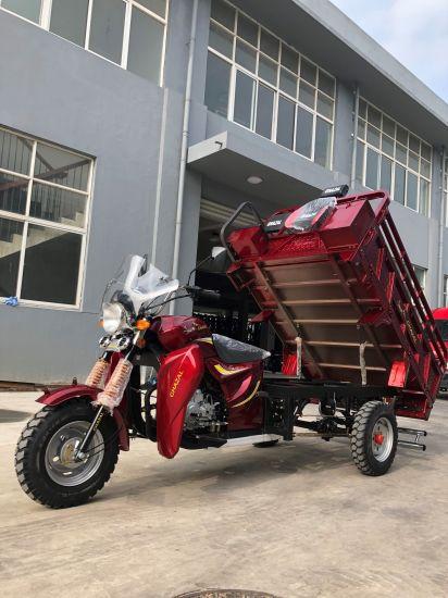 Rickshaw/ Three Wheel Motorcycle/ Tricycle (TR-6)
