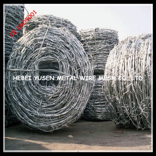 PVC Barbed Wire Fencing with Best Price pictures & photos