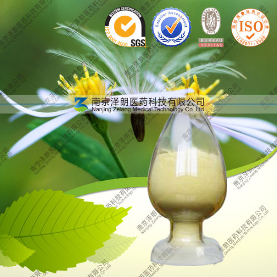Natural Galla Chinensis Extract Tannic Acid Factory Directly Supply Tannin pictures & photos
