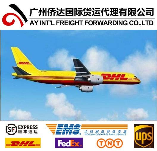 Express Courier Services From China to Algeria pictures & photos