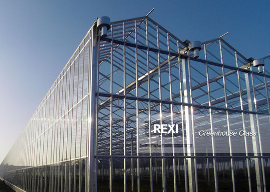 3.2mm 4mm Tempered Toughened Greenhouse Clear Glass with Factory Wholesale Price