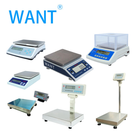 Industrial Digital Electronic Precision Weighing Platform Scale