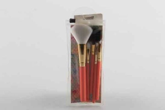 5PC PVC Bagged Makeup Brush Set