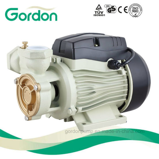 Gardon Electric Copper Wire Peripheral Water Pump with Casting Part pictures & photos