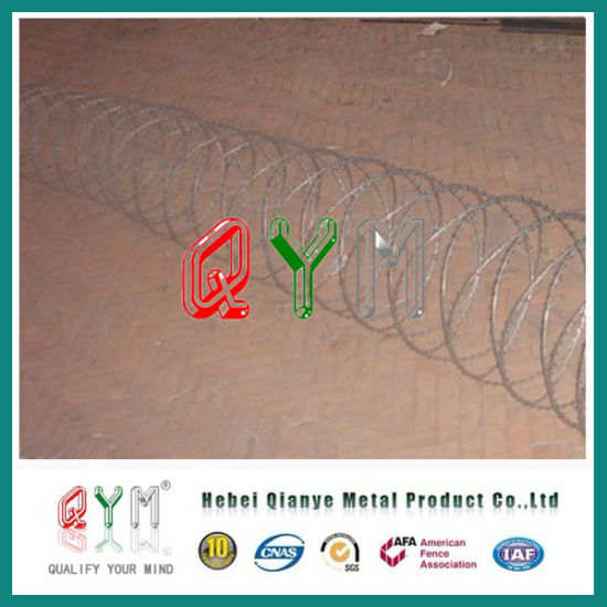 Hot Dipped Galvanized Concertina Barbed Security Wire for Military