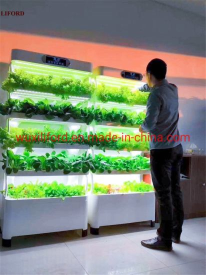 Small Home Complete Vertical Farming LED Lighting Hydroponics Growing System
