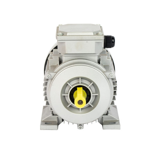 22kw 30HP 2 Poles Three Phase Asynchronous Electric Induction AC Motor