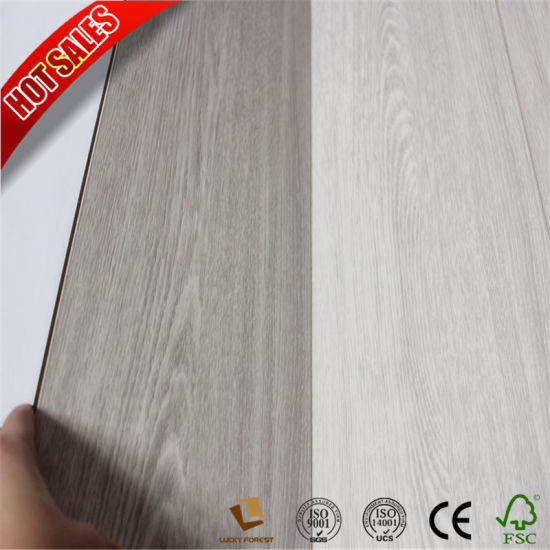China Click Plus Canadian Maple Easy Lock Laminate Flooring China