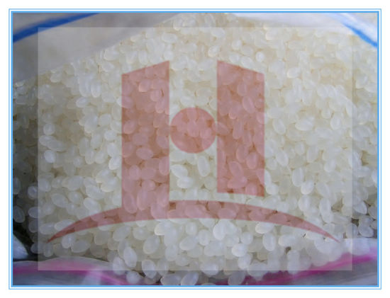 High Quality Homopolymer and Copolymer PP for Production of Semi-Condutor Processing
