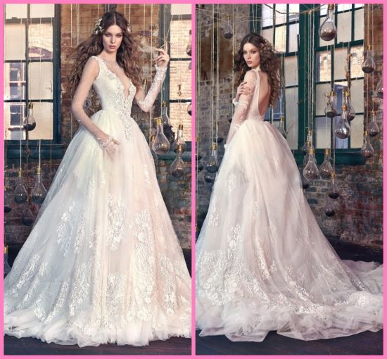 Lace Backless Bridal Gowns Sheer V-Neck Sleeves Wedding Dress Z2064 pictures & photos