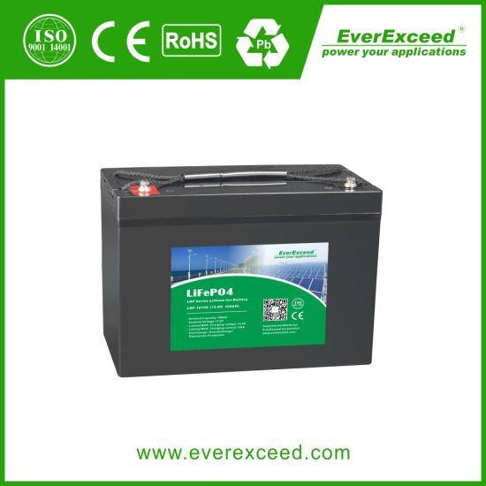 Everexceed Ldp Series UPS / Solar / Lighting / Telecom / Medical / 12V 100ah Rechargeable Deep Cycle LiFePO4 Lithium Iron Battery for Energy Storage Solution