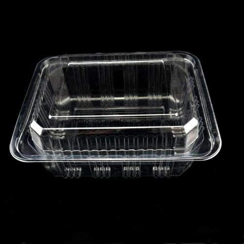 Biodegrade Clear Pp Plastic Food Packaging Container Fruits Retail Box China Plastic Food Box Food Safe Plastic Box Made In China Com