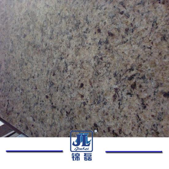 China Natural Stone Building Material New Venetian Gold Granite