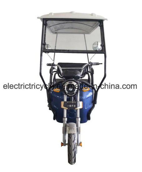600W Cargo Cabin Electric Tricycle 3 Wheel Cover Motorcycle pictures & photos