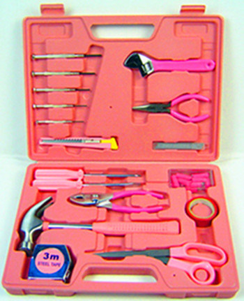 105PCS Hot Selling Ladies Tool Kit (FY105B) pictures & photos
