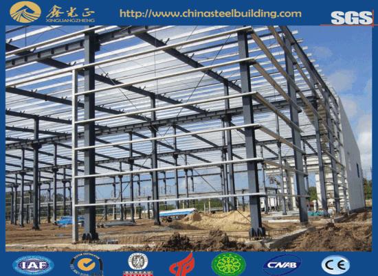 Steel Structure Buildings Supplier Like Warehouse/Workshop/Office etc (JW-16271)