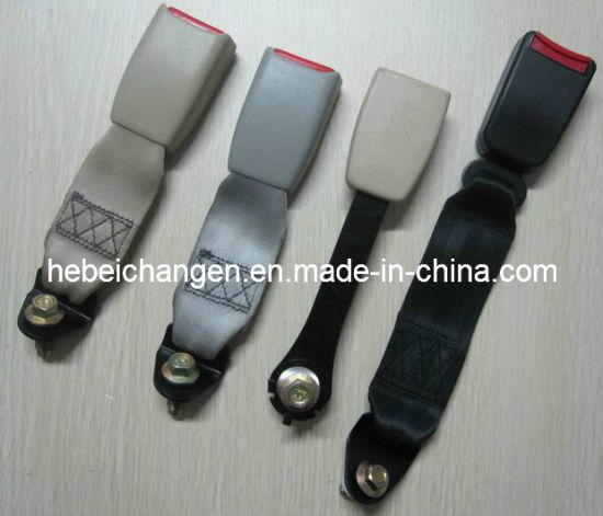 Low Price 2 Point Simple Seat Belt pictures & photos