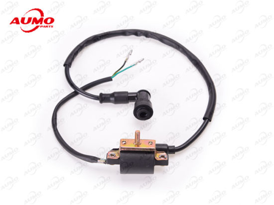 Ignition Coil for Dy100 139fmb 50cc 147fmd 70cc Engine Parts pictures & photos