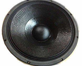 PRO Audio Sound System Line Array Neodymium 21inch Subwoofer
