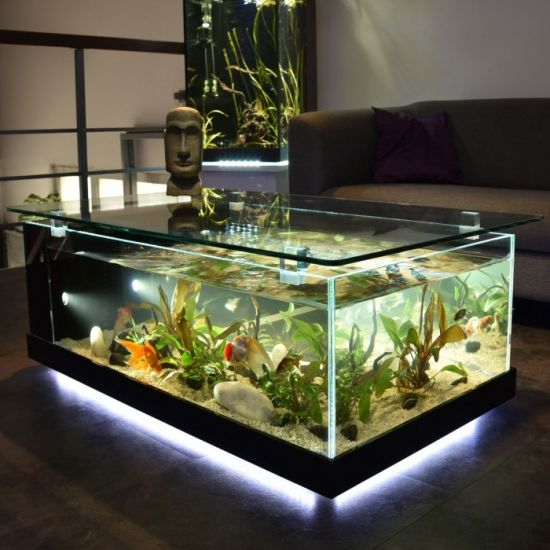 China Aquarium Fish Tank With Low Iron