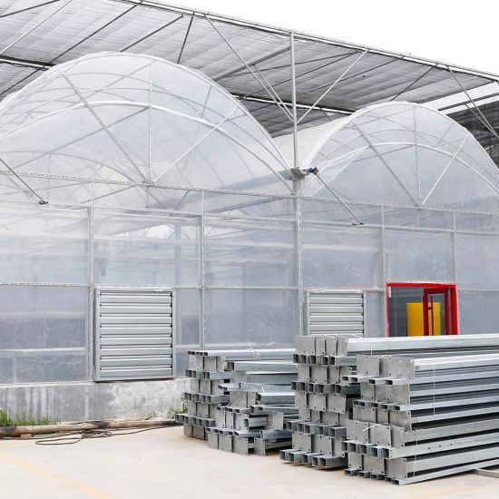Agriculture Plastic/Film Green House for Vegetables/Fruits/Flowers