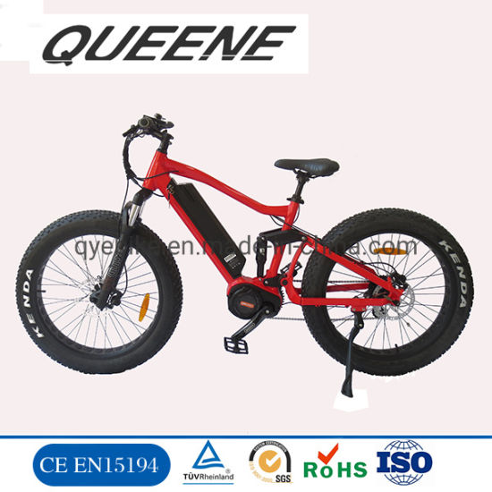 Queene/MID Drive Fat Tire Ebike with LCD Display for Performance Riding MTB