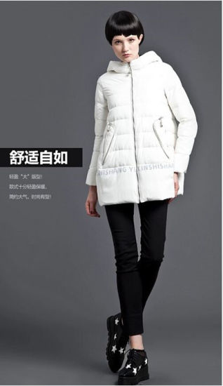 Chinese Brand Warm Zipper Hooded Long Style Down Jacket Coat for Women