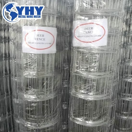 2.4m Height Galvanized Fixed Knot Livestock Fence